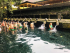 Những nơi đẹp nhất ở Đảo Bali nước Indonesia