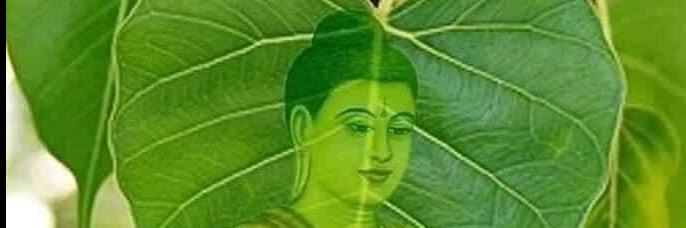 https://gody.vn/blog/khanhthutm9471/post/trai-nghiem-am-thuc-duong-pho-ha-noi-7276