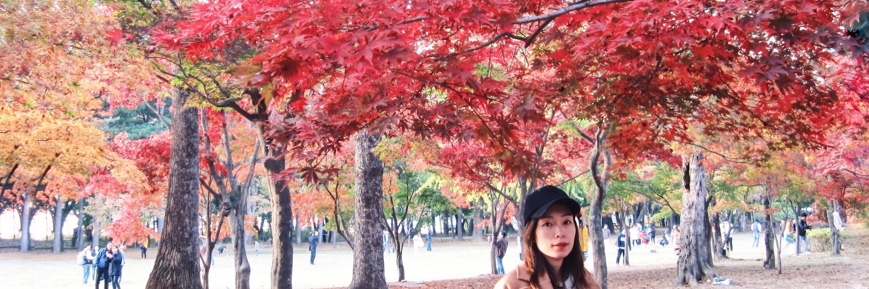 https://gody.vn/blog/vickymyta2853041/post/mua-thu-seoul-han-quoc-9086